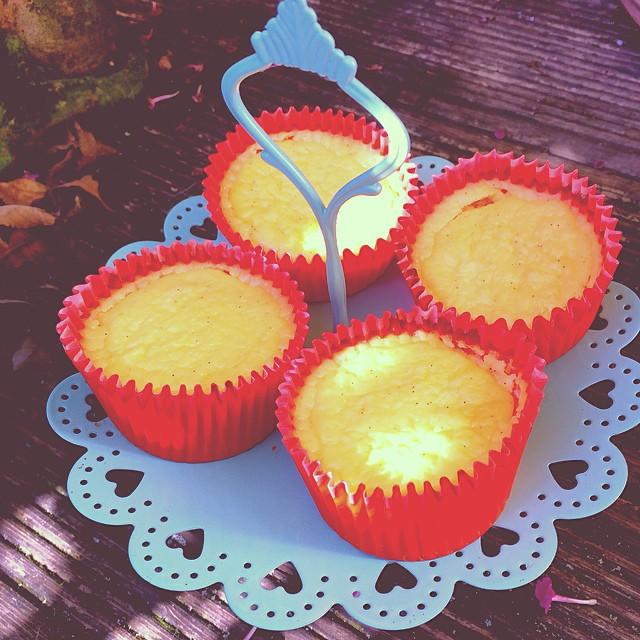 Pure Vanilla Cheesecake Muffins Ohne Boden Holla Die Kochfee