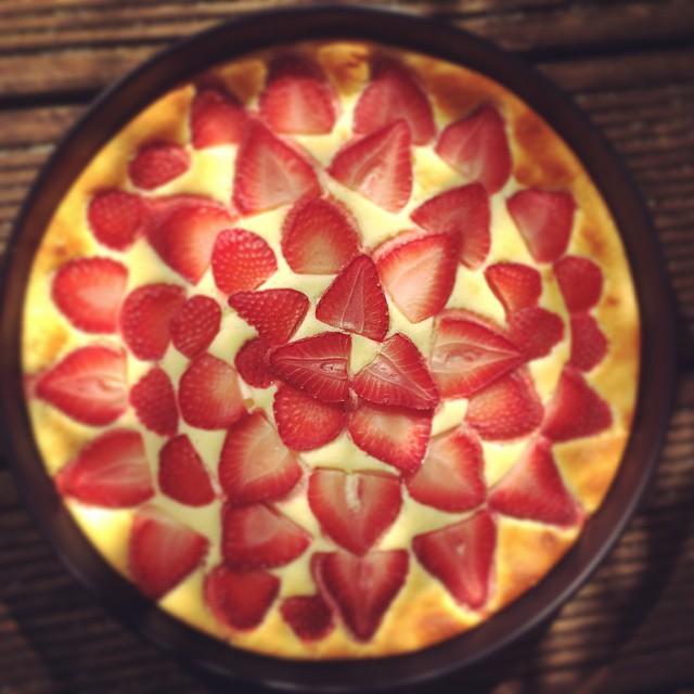 Erdbeer-Cheesecake fertig ganz focus