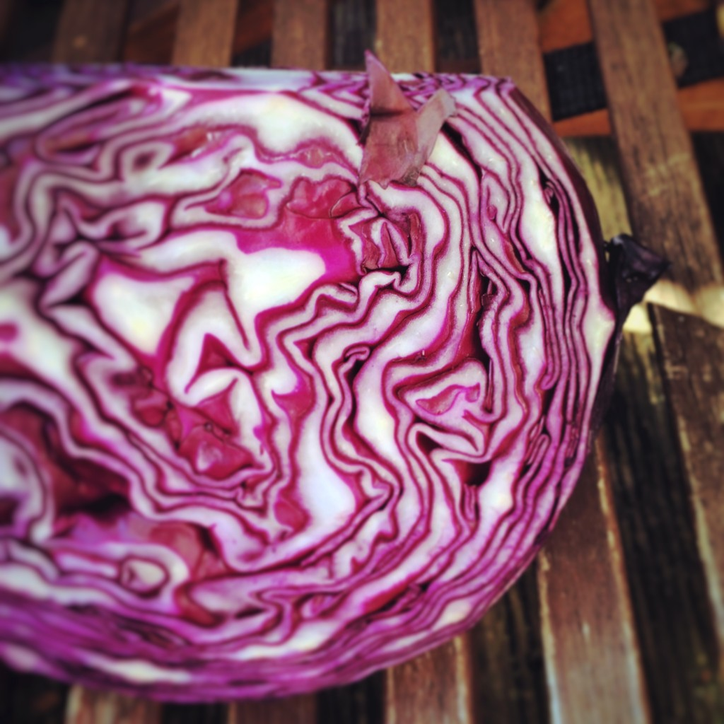 Rotkohl-Salat 8 kohl