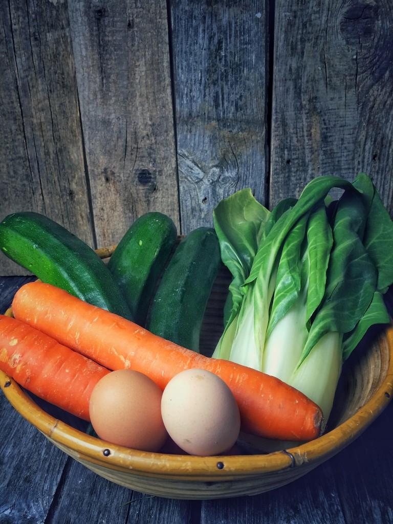 Zucchini-Rolls 1