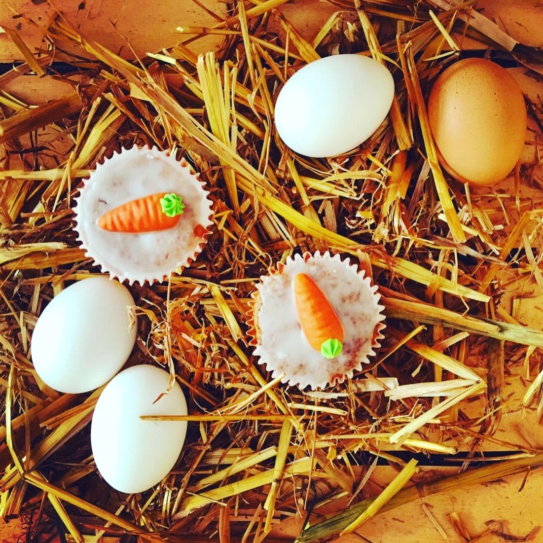 Rüblis - kleine feine Möhrenmuffins ganz ohne Zucker