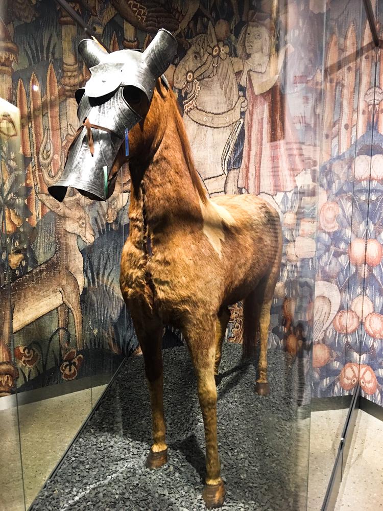 Cadolzburg Pferd