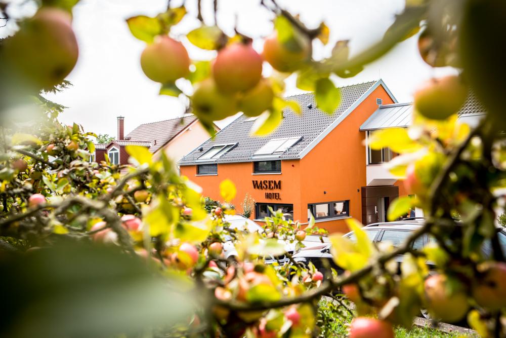 Rheinhessen genießen - Hotel Wasem