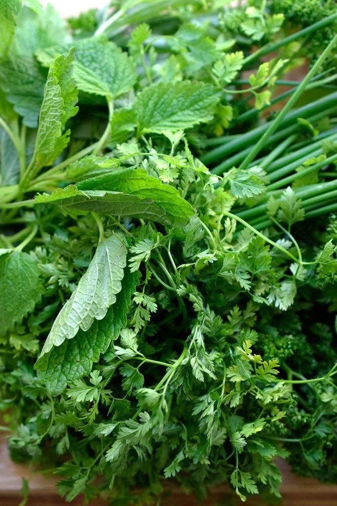 Nahaufnahme Kräuterbund Grüne Soße